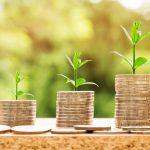 Vitalis Holdings Positive Cash Flow