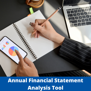 Annual Financial Statement Analysis Tool
